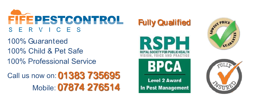 Pest Control Gairney Bank